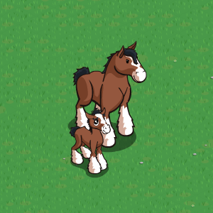 Soubor:Clydesdale.png