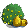 Alma Fig Tree-icon.png