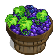 Shiraz Grape Bushel-icon
