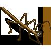 Stick Bug-icon