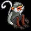 Douc Langur Monkey-icon