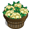 Cauliflower Bushel-icon