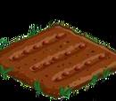 Orzeszki ziemne