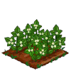 Super Black Berries 66-icon.png