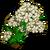 Hemlock-icon