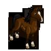 Arabian Stallion-icon.png