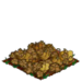 Squmpkin withered