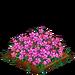 Alpine Rose extra100