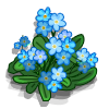Plik:Forget-Me-Not-icon.png