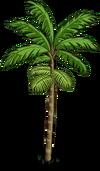 Peach Palm Tree1-icon