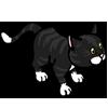 Pub Cat-icon