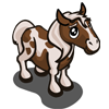 Pinto Pony Foal-icon