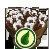 Organic Cotton Bushel-icon