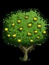 Granny Smith Apple Tree2-icon