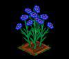 Perfect Cornflower-icon