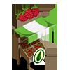 Organic Raspberry Stall-icon