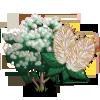 White Smoke Tree-icon