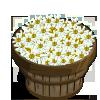 Arquivo:White Asters Bushel-icon.png
