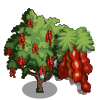 Amherstia Tree-icon.png