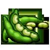 Fava Beans-icon