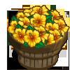 Yellow Hibiscus Bushel-icon