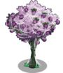 Plum4-icon.png