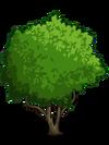 Starfruit1-icon