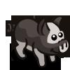 Miniature Pig-icon