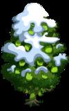 Singapore Jackfruit Tree8-icon