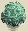 Fig Tree3-icon