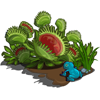 Carnivorous Plants-icon.png
