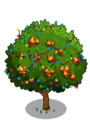 Wild Cashew6-icon