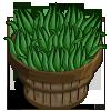 Aloe Vera Bushel-icon.png