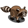 Raccoon-icon.png
