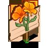 Golden Poppy Mastery Sign-icon