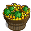 Semillon Grape Bushel-icon