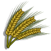 Barley-icon