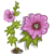 Pink Hollyhock-icon