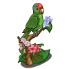 Amazon Parrot-icon.png
