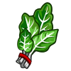 Swiss Chard-icon.png