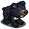 Asian Black Bear Cub-icon.png