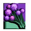 Violet Allium-icon