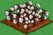 Cotton extra100