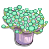 Green Toadstools-icon