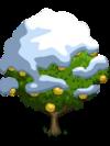 Asian Pear Tree8-icon