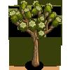 Joshua Tree-icon