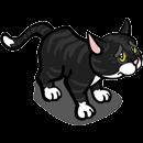 Soubor:Found Black Cat.png