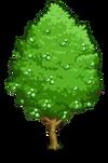 Ginkgo2-icon
