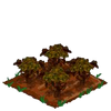 Poinsettia withered.png