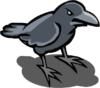 Crow (pest)-icon